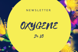 Creadire-Newsletter